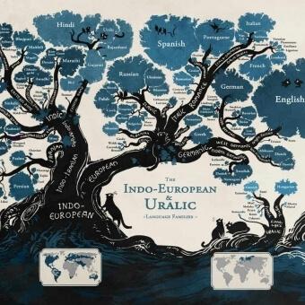 Wpływ języka polskiego na proces nauki języka obce